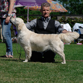 Lotte – Reliable Delaith Lotte van de Loopakker