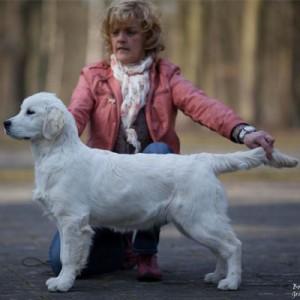 Annie van Hoenselaar