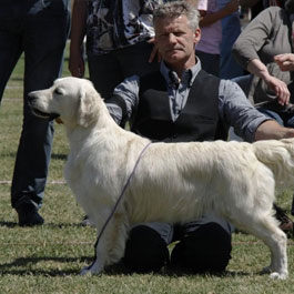 Scrabble -VDH, Club Champ. – Orange Caipirinha-Ice van de Loopakker